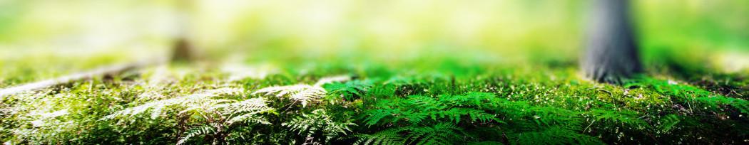 Sélection d'articles écologiques et réutilisables